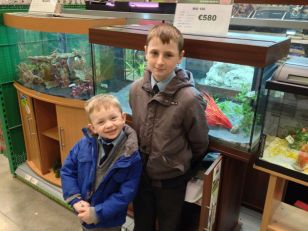 Fish Club Take Possession of New Fish Tank.  New Fish Are Next!
